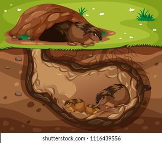Guinea Pig Family Living Underground illustration