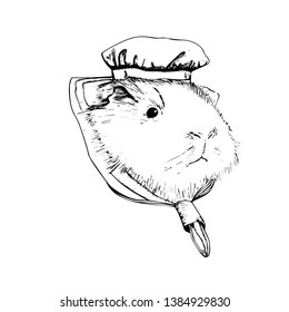 guinea pig, vector, grafic,  rodent, nature