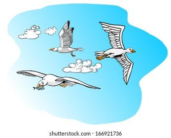 gulls flying and fishing