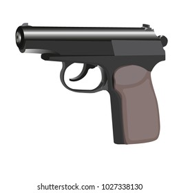 gun for self-defence or for police