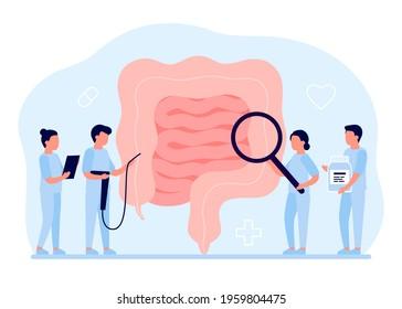 Gut organ medical checkup, health intestine and digestive. Doctor examining gastrointestinal tract. Medical gut disease treatment. Vector illustration