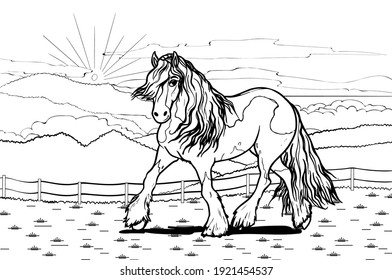 Gypsy cob horse on mountain background. Horse pattern design. Line art style horse breed for children colored book creation.