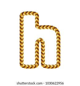 H Braid Letter Logo Icon Design