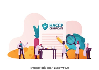 Haccp Hazard Analysis and Critical Control Point. Standard and Certification, Quality Control Management Rules for Food Industry. Tiny Characters with Microscope. Cartoon People Vector Illustration