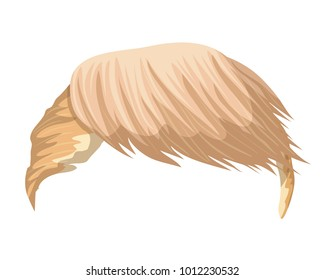 Hair Donald Trump. Can use for caricatures and cartoon character. Vector illustration.