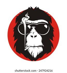 hair monkey smoke