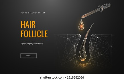 Hair roots treatment low poly landing page template. 3d pipette with drop near follicle polygonal illustration. Head skin nourishing oils promo banner. Professional hair care services homepage design