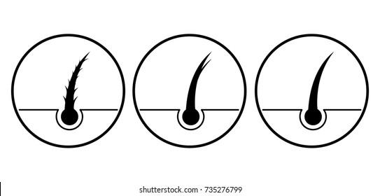 Hair split ends vector illustration