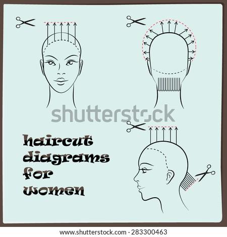 Hairdressing Haircut Diagram Women Stock Vector Royalty Free