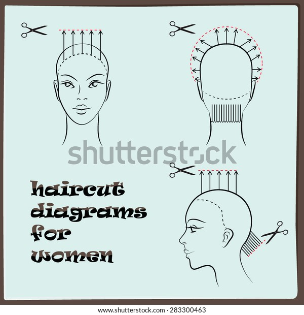 Hairdressing Haircut Diagram Women Stock Vector (Royalty
