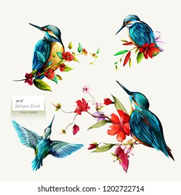 Halcyon on branches with leaves. Set of four birds isolated on white. Hand drawn, watercolor illustration. Design elements. Vector - stock.