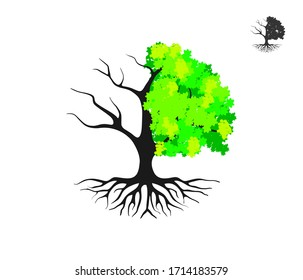 half dead and wither tree and vector illustration, molt tree, drought tree vector.Symbol of an unbalanced nature