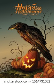 Halloween background with a crow sitting on the pumpkin, illustration. - Vector