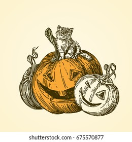 Halloween. Black cat sitting on pumpkin. Vintage style. Vector illustration.