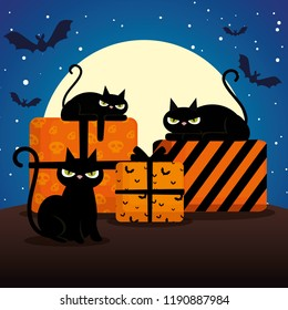 halloween black cats with gifts on night