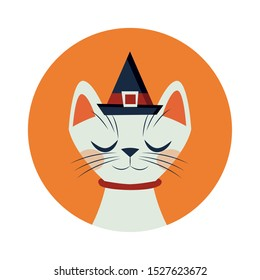 halloween cat mascot with witch hat vector illustration design