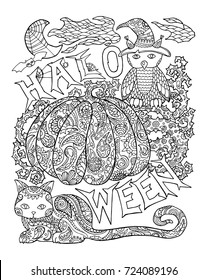 Halloween coloring page with pumpkin. Halloween vector illustration with owl, cat, spider. Outlined pumpkin with floral pattern. Creepy cute Halloween characters. Halloween pumpkin for adult coloring
