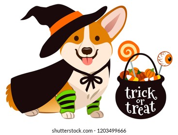 Halloween corgi puppy dog dressed as witch, wearing hat and cape, with black trick or treat cauldron filled with candy corn, candy pumpkins and lollipops. Pet lovers theme vector cartoon illustration.