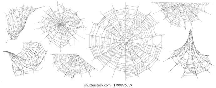 Halloween decor, spider cobweb, hand drawn vector illustration.