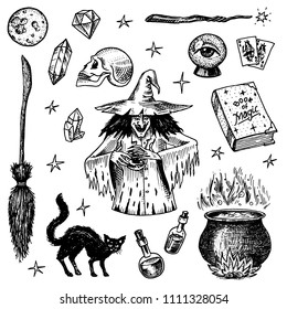 Halloween elements. Magic ball, witch with book of spells, cursed black cat, beldam and sorcery, hag or hex, potion and cauldron, skull and fortune-telling cards. Hand drawn engraved vintage sketch.