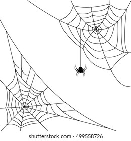 Halloween monochrome web with spiders in corners, isolated on white background. Hector venom cobweb set. Vector illustration.