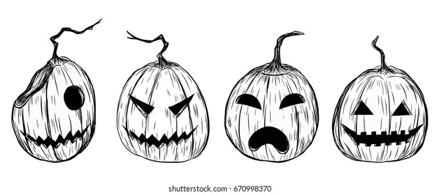 Halloween Pumpkin Drawing.Pumpkin Sketch Images Stock Photos Vectors Shutterstock