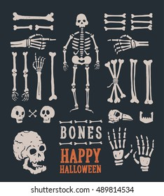 Halloween. Set of cartoon skulls and bones. Vector illustration.