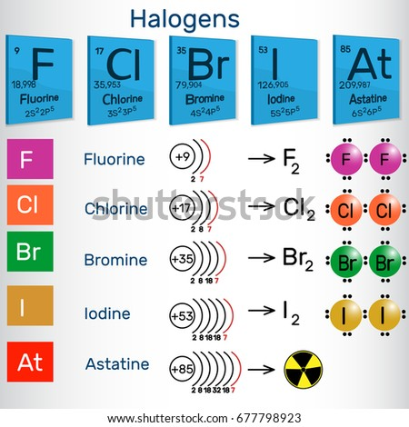 Halogens Chemical Elements Periodic Table Vector Stock Vector