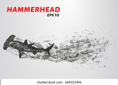 The hammerhead shark from the particles. Fish hammer consists of small circles