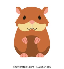 hamster rodent on white background