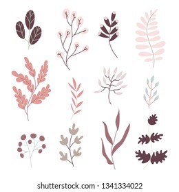 Hand draw cartoon set. Flovers and plants, leaves, stalks. Colorful vector isolated plants. Flowers botanical art set. Vector.