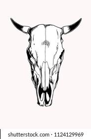 hand draw cow skull for tatto, design tshirt