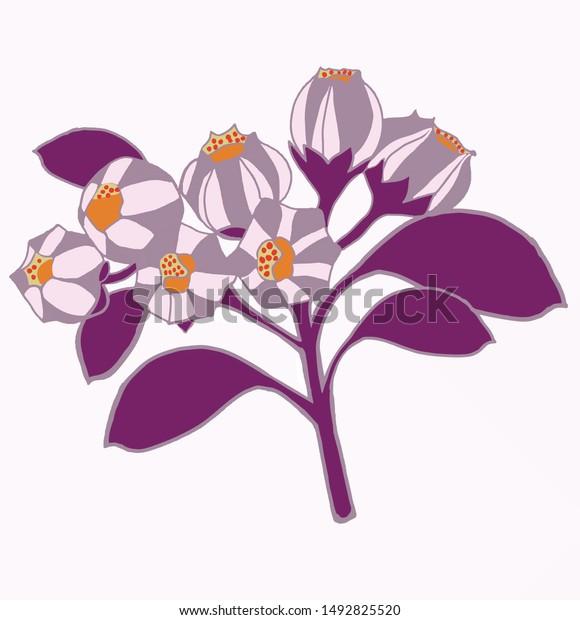 Hand Draw Illustration Purple Flowersyellow Stamens Stock Vector