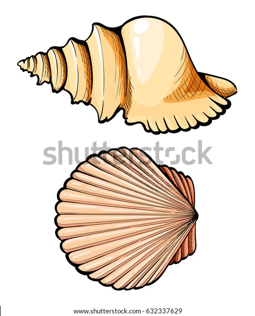 Hand draw Set sea shell, coral, crab, shrimp and octopus. Vector black engraving vintage illustrations. Isolated on white background