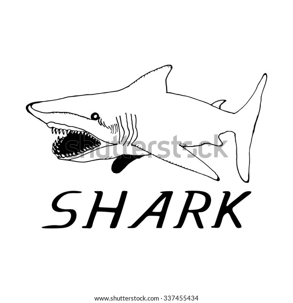 Hand Draw Shark Style Sketch On Stock Vector (Royalty Free