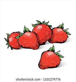 Hand draw of strawberry. Vector illustration.