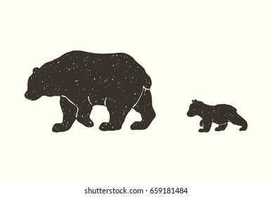 Baby Bear Images Stock Photos Vectors Shutterstock