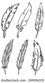 hand drawing bird feathers on a white background