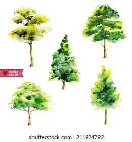 hand drawing by water color a vector set of trees