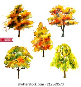 hand drawing by water color a vector set of  autumn trees