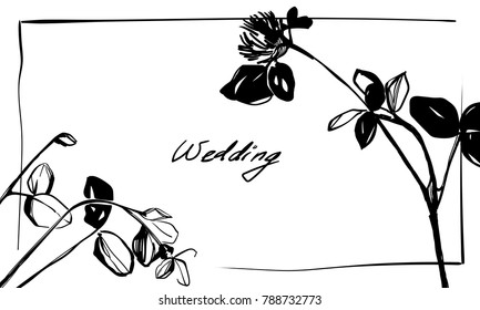 Hand drawing clover shamrock herbal grass. Nifty footstalk silhouette. Vintage styling gentle element for natural cosmetic design. Flower and leaves botanic sketch silhouette for wedding invitation