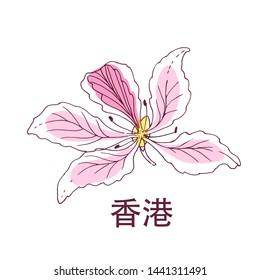 Hand drawing of national flower of Hong Kong Bauhinia and hieroglyph of Hong Kong name.