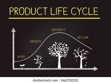 Hand Drawing product life cycle image on blackboard,business,flamework