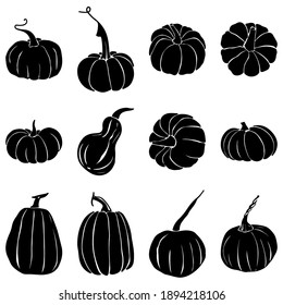 Hand drawing pumpkins set. Vector illustration, line graphics. Linear art. Silhouettes of pumpkins. Autumn decor