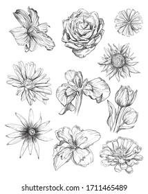 Pencil, Transparent PNG Clipart Images Free Download , Page 19 - ClipartMax