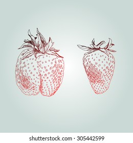 Hand drawing strawberry (lines)
