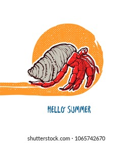 Hand drawing vector illustration - Crab hermit. Isolated on white background