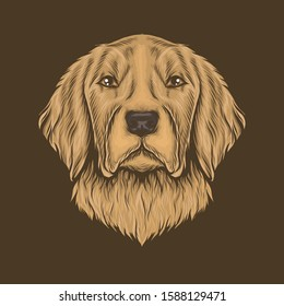 Hand drawing vintage golden retriever head vector illustration