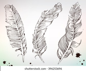 Hand drawing woodcut, feathers and splash