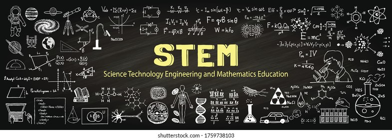 Hand drawn about STEM on chalkboard. Vector illustration